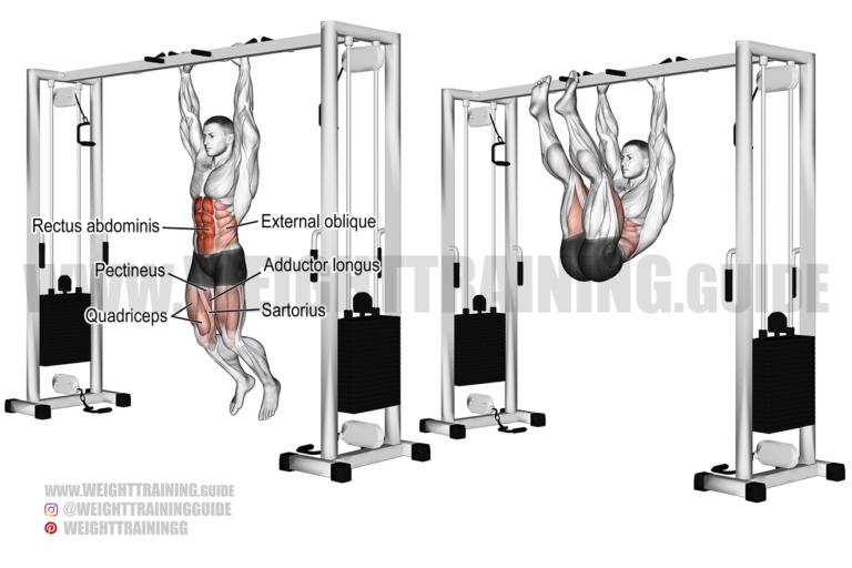 Hanging straight leg and hip raise