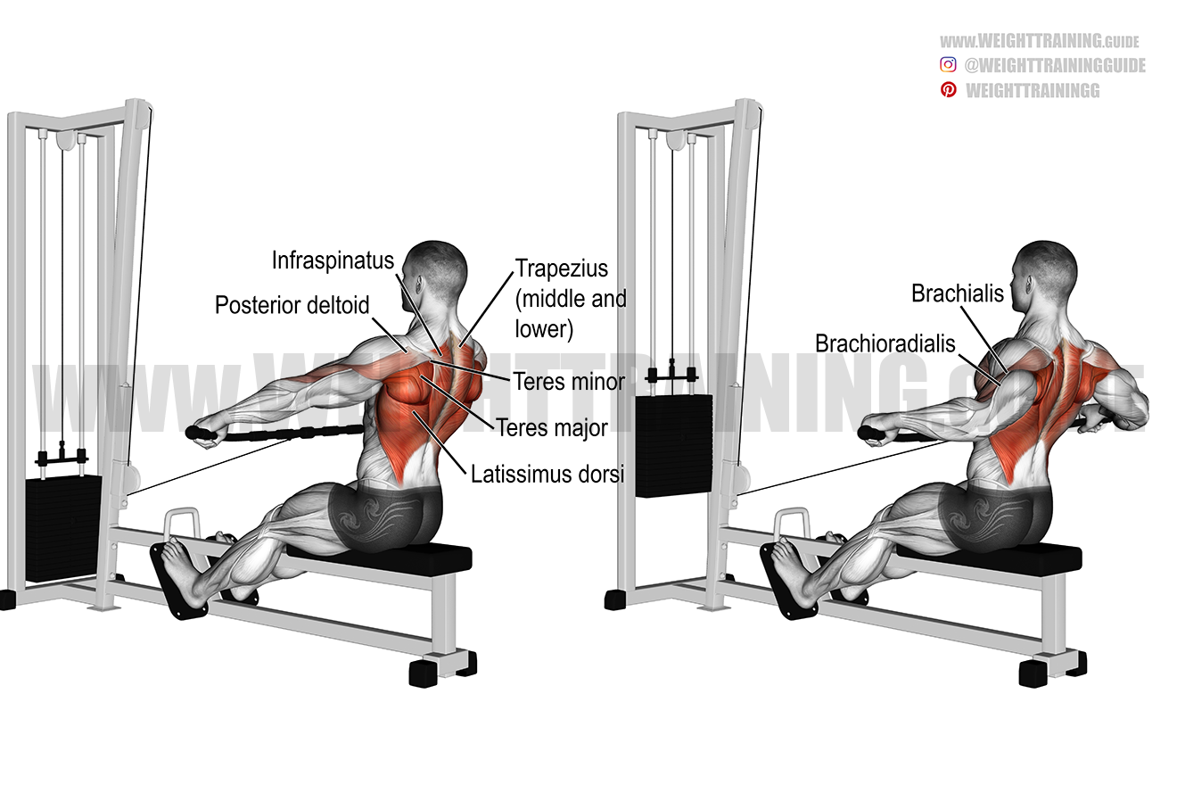 Wide-grip cable row exercise