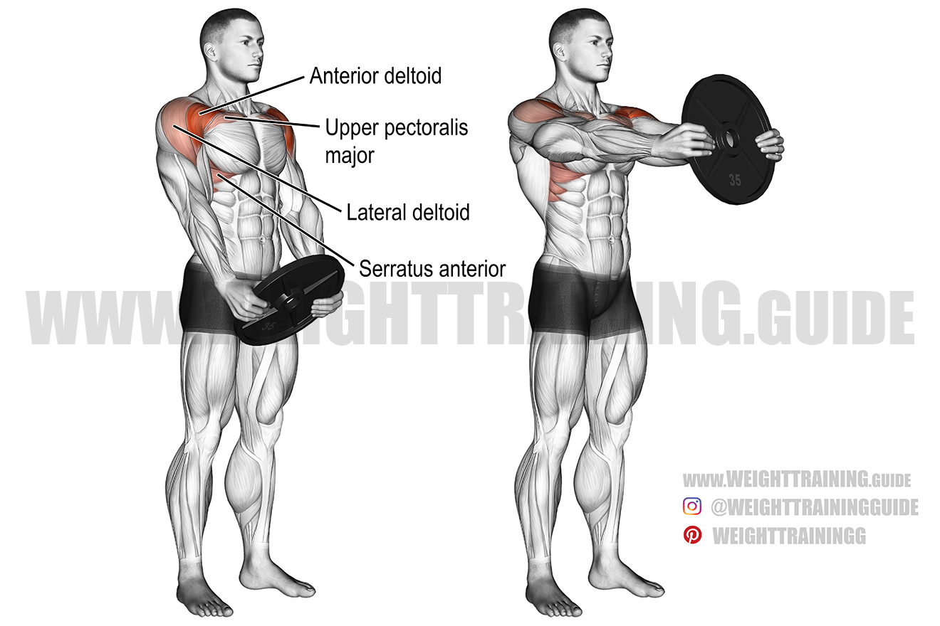 Plate front raise exercise