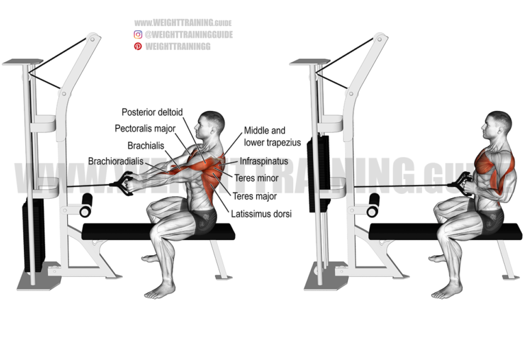 Straight-back seated cable row