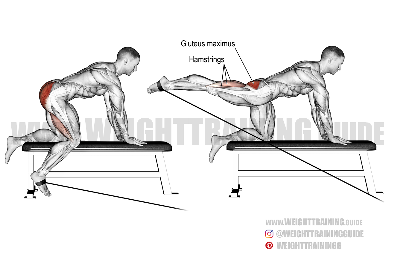 Kneeling cable hip extension exercise