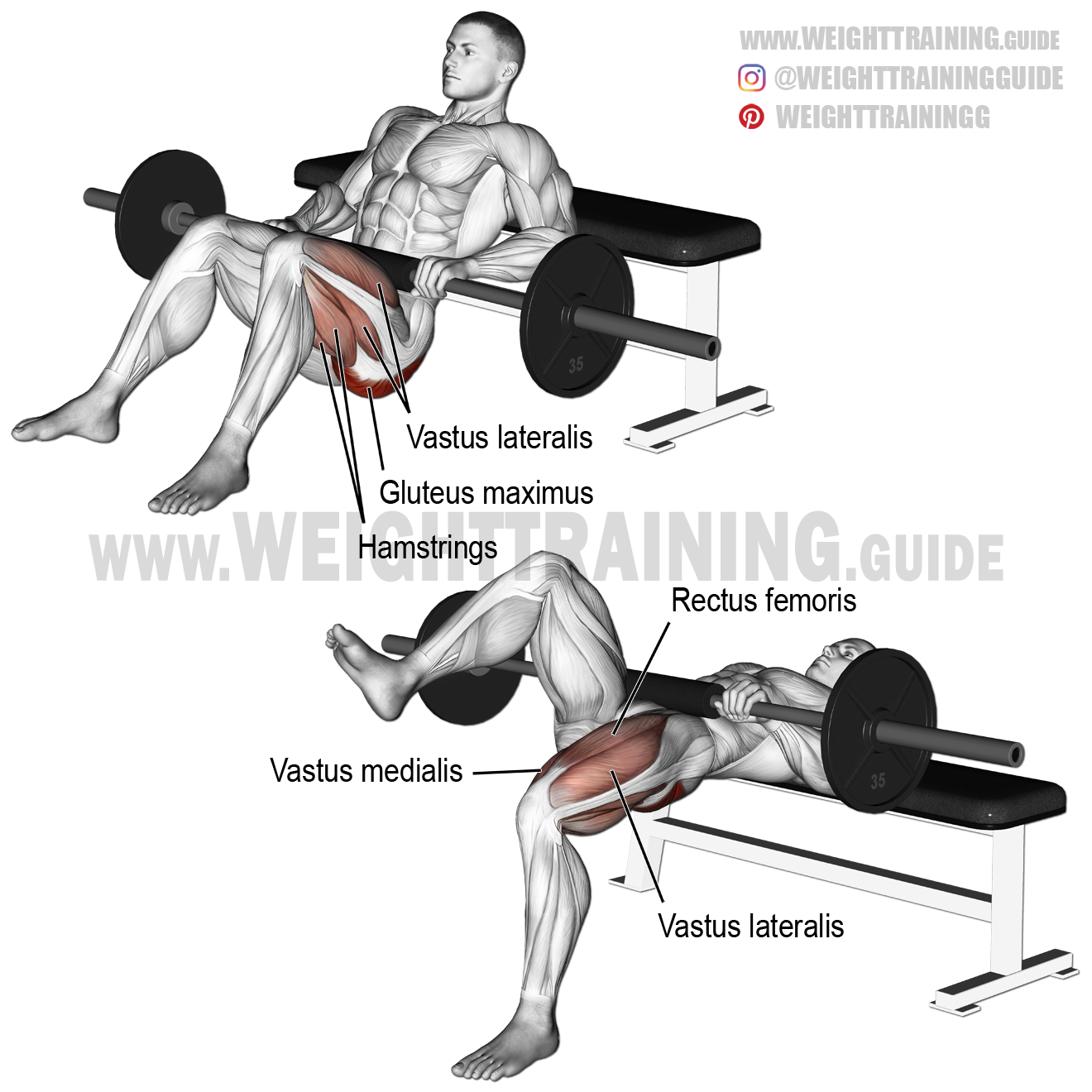 Barbell one-leg hip thrust exercise instructions and video