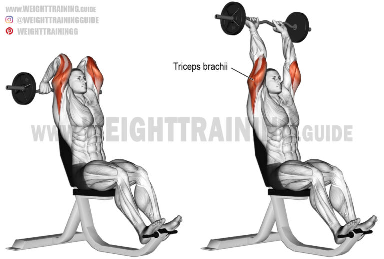 Seated overhead EZ bar triceps extension