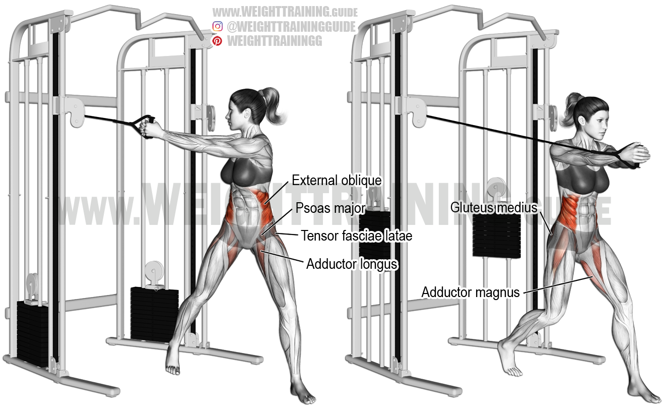 Cable twist exercise instructions and video | Weight ... Oblique Exercises Cable