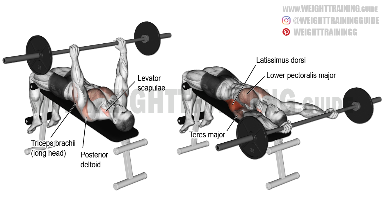 Decline Barbell Pullover Exercise Guide And Video Weight Training