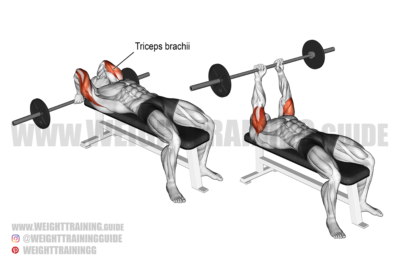 Lying barbell triceps extension exercise