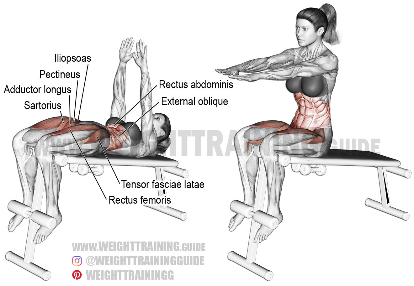 Decline Sit Up Exercise Instructions And Video Weight