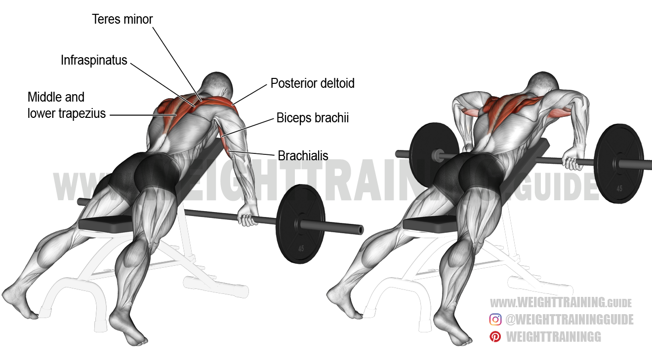 Prone Incline Wide Grip Upright Row Exercise Instructions