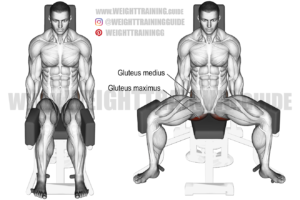 Machine seated hip abduction exercise