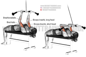 Lying high cable curl exercise