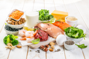 Plant and animal sources of protein